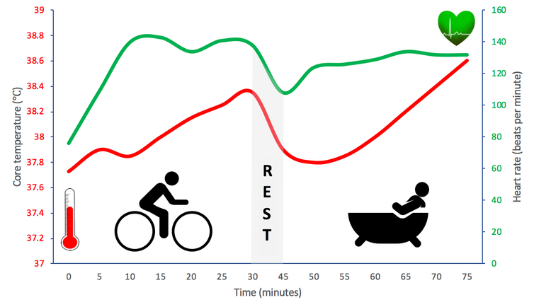 Graphique linéaire montrant la fréquence cardiaque (vert) et la température (rouge).