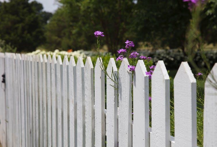 Photo d'une barrière de bois blanche délimitant un jardin.